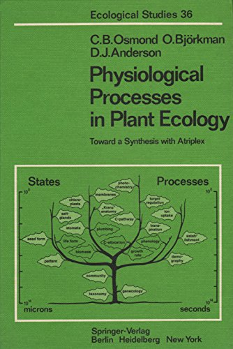 9780387100609: Physiological Processes in Plant Ecology: Toward a Synthesis With Atriplex (Ecological Studies)