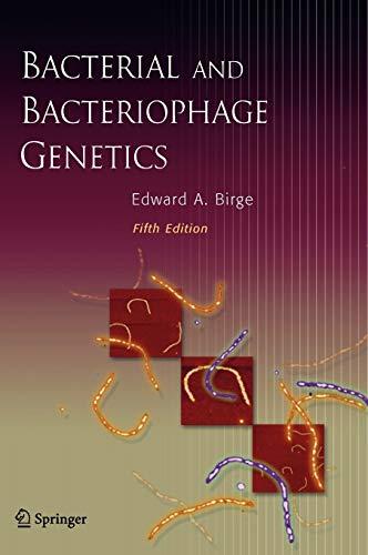 9780387239194: Bacterial and Bacteriophage Genetics
