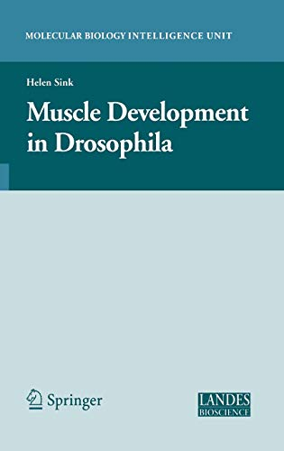9780387300535: Muscle Development in Drosophilia (Molecular Biology Intelligence Unit)