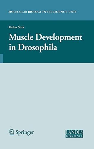 9780387300535: Muscle Development in Drosophilia (Molecular Biology Intelligence Unit)