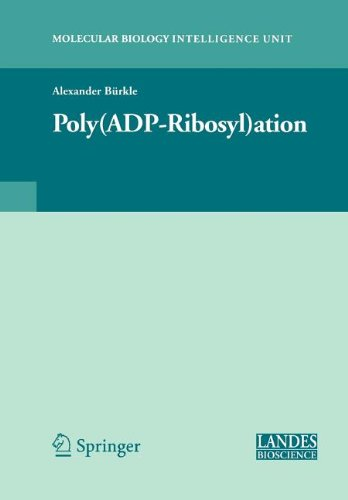 9780387513218: Poly(adp-Ribosyl)Ation (Springer Series in Solid-State Sciences)