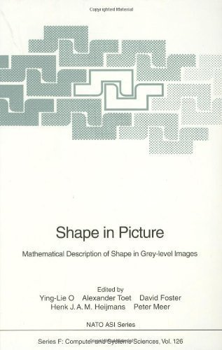 Shape in Picture: Mathematical Description of Shape in Grey-Level Images [Feb 01, 1994] O, Ying-Lie...