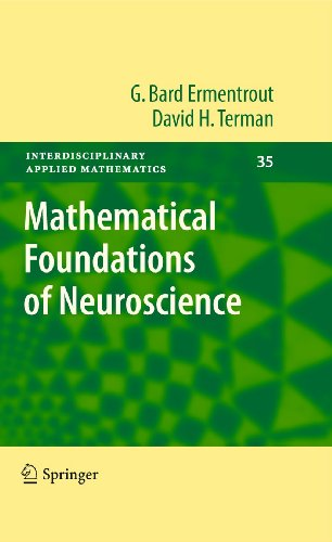 9780387877075: Mathematical Foundations of Neuroscience (Interdisciplinary Applied Mathematics)