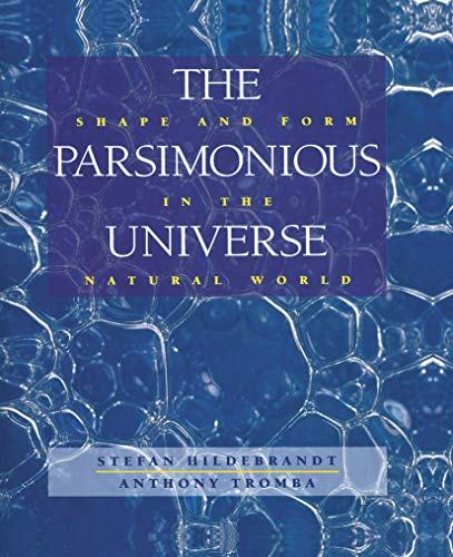 9780387979915: The Parsimonious Universe: Shape and Form in the Natural World