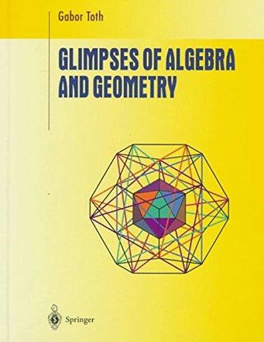 9780387982137: Glimpses of Algebra and Geometry (Undergraduate Texts in Mathematics)
