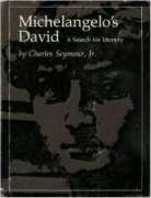 9780393007350: Michelangelo's David;: A search for identity