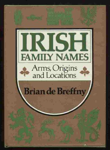 9780393016123: Irish Family Names