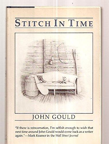 9780393019766: Stitch in Time