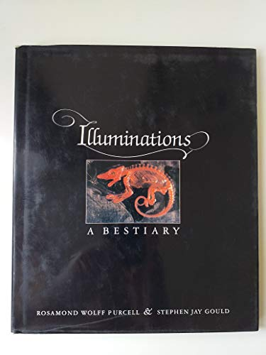 9780393023749: Illuminations: A Bestiary