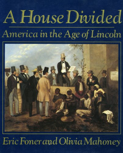 9780393027556: A House Divided: America in the Age of Lincoln