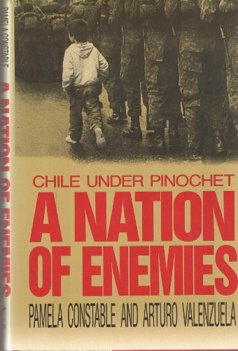 9780393030112: A Nation of Enemies: Chile Under Pinochet