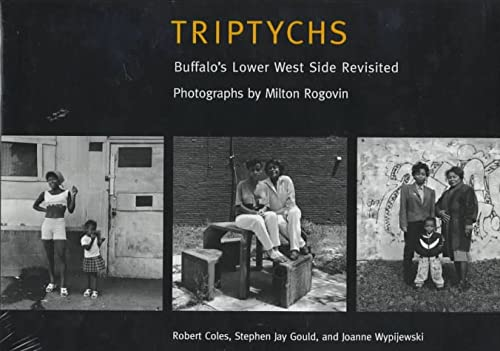 Triptychs - Buffalo's Lower West Side Revisited