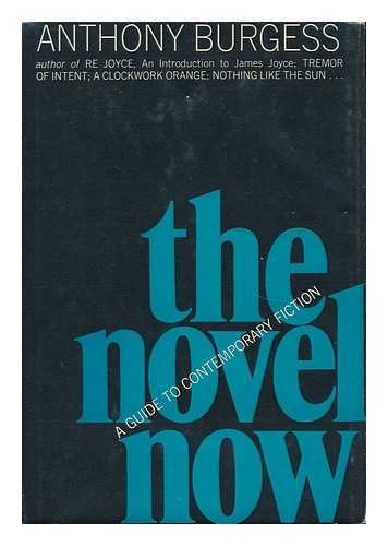 9780393041415: The Novel Now: A Guide to Contemporary Fiction