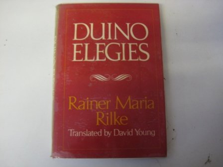 9780393044829: Duino Elegies
