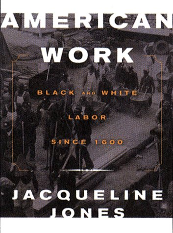 9780393045611: American Work: Four Centuries of Black and White Labor