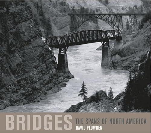 9780393050561: Bridges: The Spans of North America