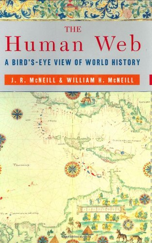 9780393051797: The Human Web: A Birds-eye View of World History