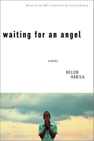 9780393051933: Waiting for an Angel: A Novel