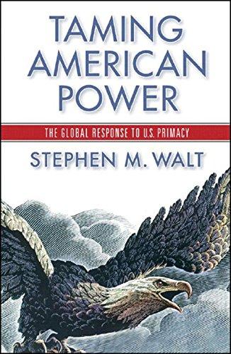 9780393052039: Taming American Power: The Global Response to U.S. Primacy