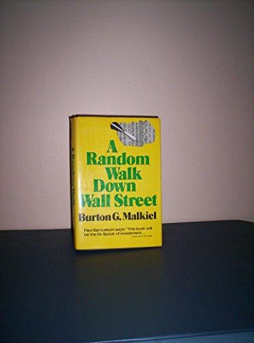 9780393055009: A Random Walk Down Wall Street