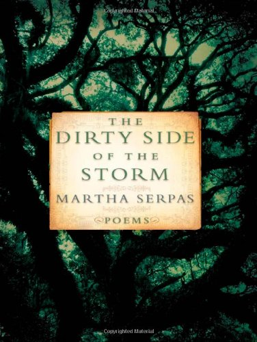 9780393062663: The Dirty Side of the Storm: Poems