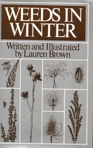Weeds in Winter: Lauren Brown