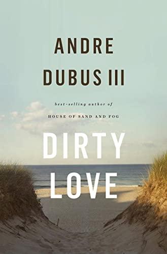 9780393064650: Dirty Love