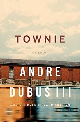 9780393064667: Townie: A Memoir