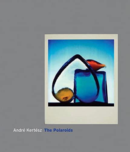 9780393065640: Andre Kertesz: The Polaroids