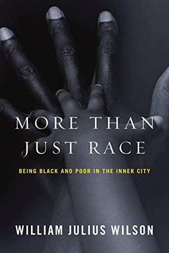 9780393067057: More Than Just Race: Being Black and Poor in the Inner City (Issues of Our Time)