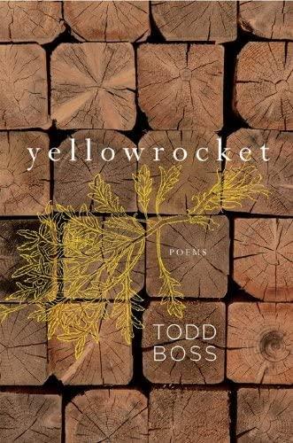 9780393067682: Yellowrocket: Poems