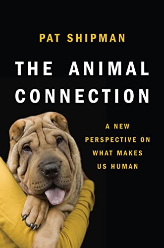 9780393070545: The Animal Connection: A New Perspective on What Makes Us Human