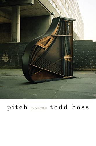 9780393081039: Pitch: Poems