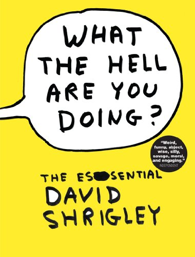 9780393082470: What the Hell Are You Doing?: The Essential David Shrigley