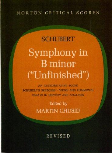 9780393097313: Symphony in B Minor (