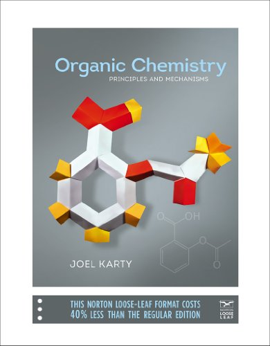 9780393123616: Organic Chemistry: Principles and Mechanisms