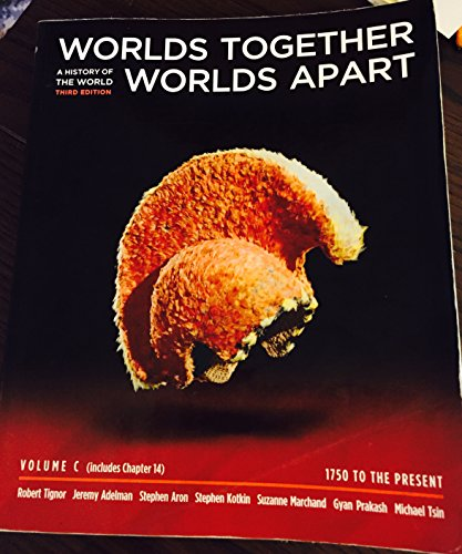 9780393136739: Worlds Together, Worlds Apart - Volume C and Chapter 14