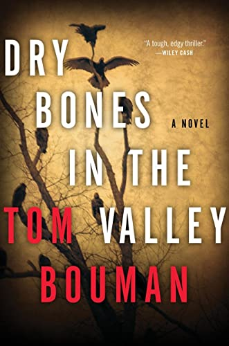 Dry Bones in the Valley: A Novel: Bouman, Tom Hegarty