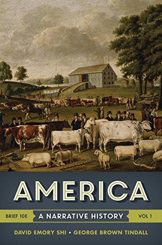 9780393265972: America: A Narrative History (Brief Tenth Edition) (Vol. 1)