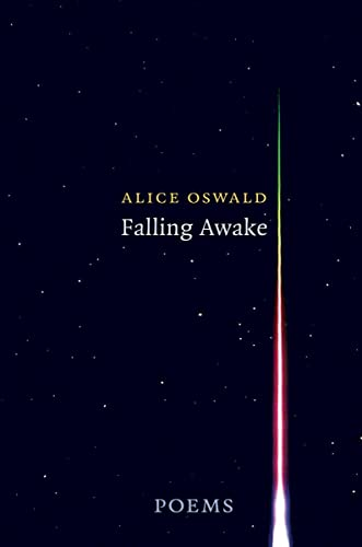 9780393285284: Falling Awake: Poems