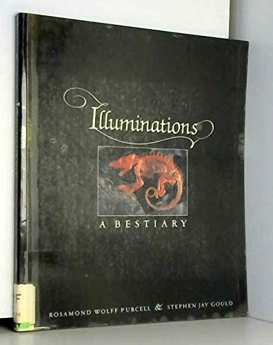 9780393304367: Illuminations: A Bestiary