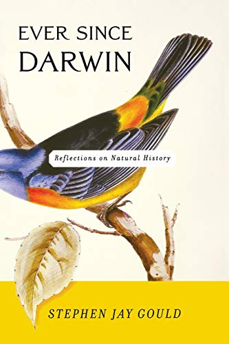 9780393308181: Ever Since Darwin: Reflections in Natural History