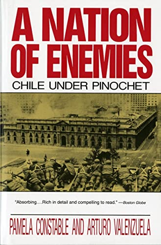 9780393309850: A Nation of Enemies: Chile Under Pinochet (Norton Paperback)