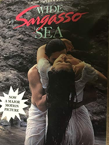 9780393310481: Wide Sargasso Sea: A novel (Norton Paperback Fiction)