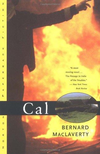 9780393313321: Cal: A Novel
