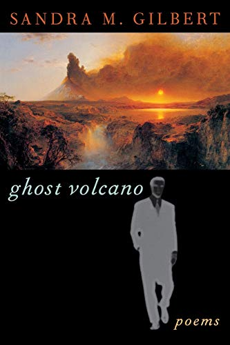 9780393314472: Ghost Volcano: Poems