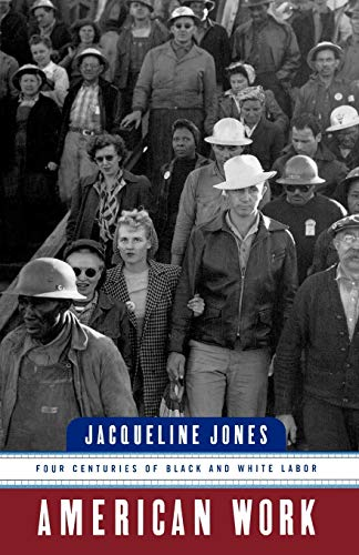 9780393318333: American Work: Four Centuries of Black and White Labor