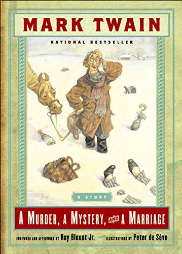 9780393324495: A Murder, a Mystery and a Marriage: A Story