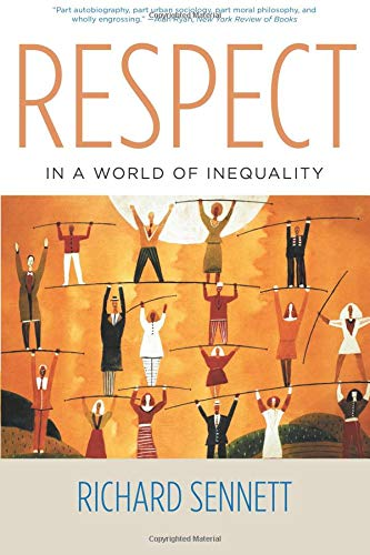 9780393325379: Respect in a World of Inequality