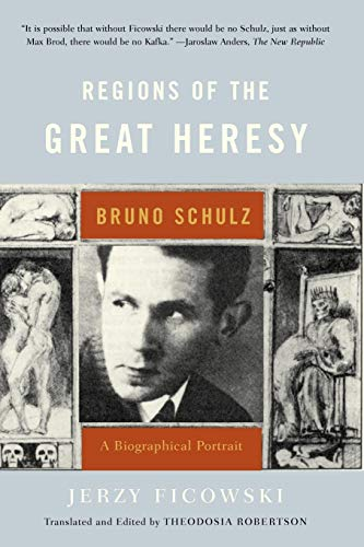 9780393325478: Regions of the Great Heresy: Bruno Schulz, A Biographical Portrait